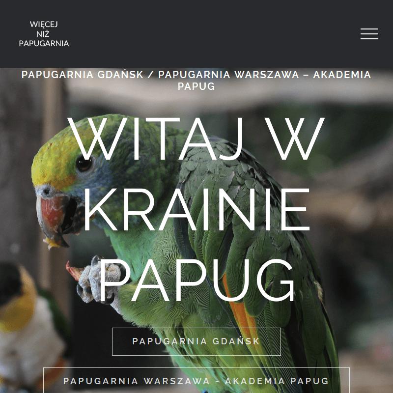 Karmienie papug - Gdańsk
