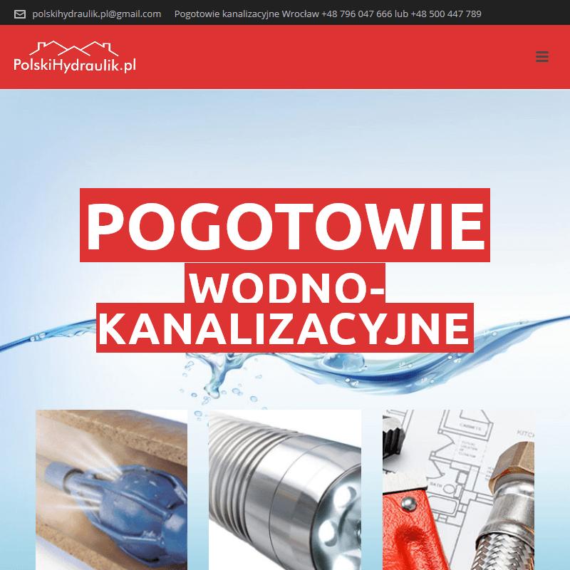 Monitoring kamerą inspekcyjną - Wrocław